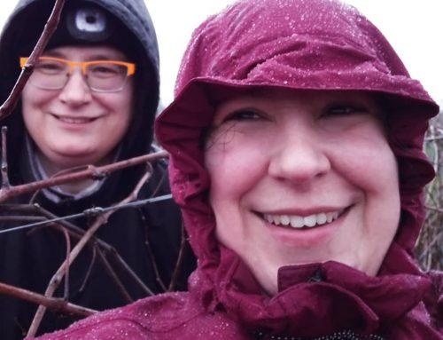 Rebenschneiden bei Regen und Wind